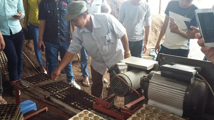 hướng dẫn quy trình tạo phân bón cho cây rau